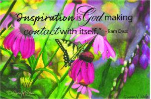 butterfly inspiration